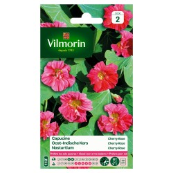 Vilmorin - Capucine N, Cherry rose