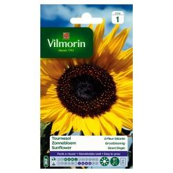 Vilmorin - Soleil Tournesol Fleur Géante
