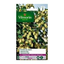 Vilmorin - Houblon du Japon
