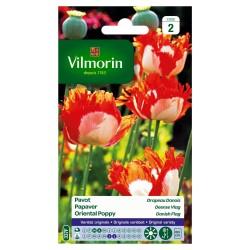 Vilmorin - Pavot Drapeau Danois