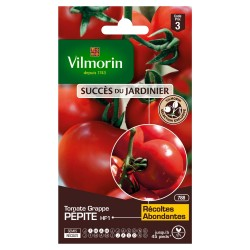 Vilmorin - Tomate Pépite HF1 (Création Vilmorin) (à grappe) - SDJ