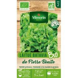 Vilmorin - Laitue pierre bénite