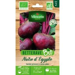 Vilmorin - Betterave noire d'Egypte Bio