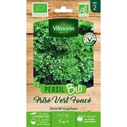 Vilmorin - Persil Vert Frise BIO