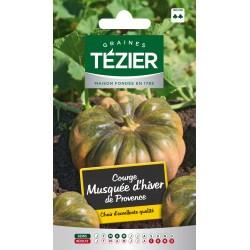 Tezier - Courge musquée d'hiver de Provence