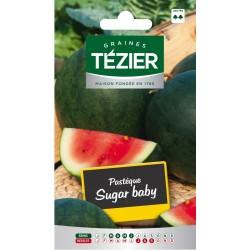 Tezier - Pastèque Sugar Baby (melon d'eau)