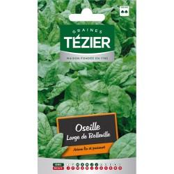Tezier - Oseille Large de Belleville