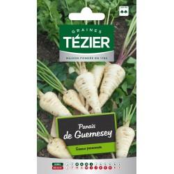 Tezier - Panais de Guernesey