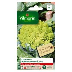 Vilmorin - Chou Brocoli Romanesco Précoce