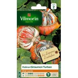 Vilmorin - Potiron Giraumon Turban Vl 2