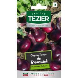 Tezier - Oignon rouge de Brunswick