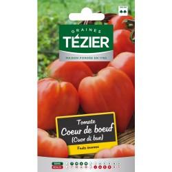Tezier - Tomate Cuor di bue