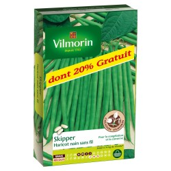 Vilmorin - Haricot Nain A Filet Sans Fil Skipper (Création Vilmorin)