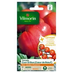 Vilmorin - Tomate Cuor Di Bue VL 2 Ech Harmony F1