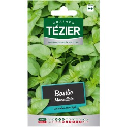 Tezier - Basilic Marseillais