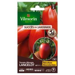 Vilmorin - Tomate Lancelot HF1 (Obtention Vilmorin - ) - SDJ