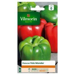 Vilmorin - Poivron Yolo Wonder