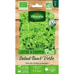 Vilmorin - Laitue à Couper Salad BOWL Verte / Bio