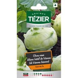 Tezier - Chou Rave Blanc hâtif de Vienne (di Vienna bianco)