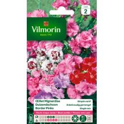 Vilmorin - Oeillet Mignardise simple varié (remplace double)