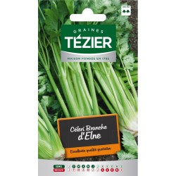 Tezier - Céleri branche d'Elne