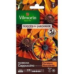Vilmorin - Rudbeckia Cappuccino
