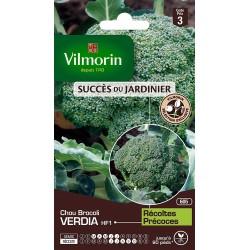 Vilmorin - Chou Brocoli verdia