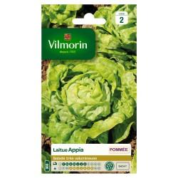 Vilmorin - Laitue Pommée Appia