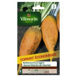 Vilmorin - Betterave fourragère jaune géante de Vauriac format éco