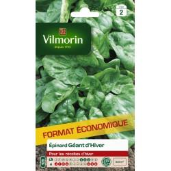 Vilmorin - Epinard Géant d'Hiver Fort Grammage