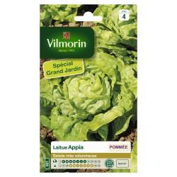 Vilmorin - Laitue Appia Grand Jardin