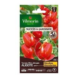 Vilmorin - Tomate Aligote HF1