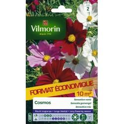 Vilmorin - Cosmos Sensation varié format éco