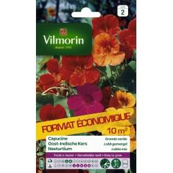 Vilmorin - Capucine grande variée format éco