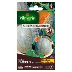 Vilmorin - Laitue Romaine Melon Ananas d'Amérique - Cm Fort Grammage