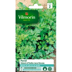 Vilmorin - Persil géant d'Italie race Novas