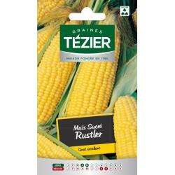 Tezier - Maïs sucré Rustler