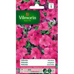 Vilmorin - Pétunia Nain Rose