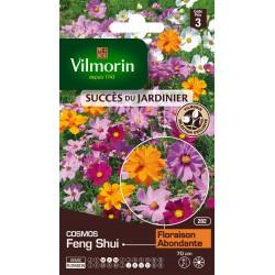 Vilmorin - Cosmos Feng Shui