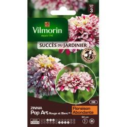 Vilmorin - Zinnia Pop Art Rg Et Blc