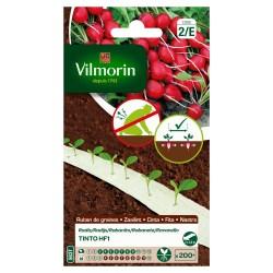 Vilmorin - Radis Tinto HF1  5m (création Vilmorin - )
