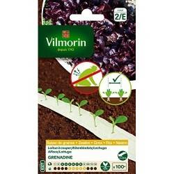 Vilmorin - Ruban graines de Laitue A couper Grenadine