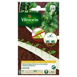 Vilmorin - Ruban Mâche Agathe 5m