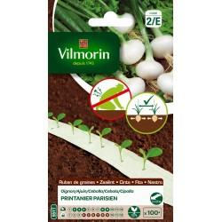 Vilmorin - Ruban Oignon Print F1 5m