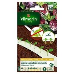 Vilmorin - Ruban mélange graines de Chicorées