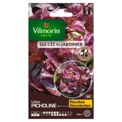 Vilmorin - Laitue Pommée Picholine - SDJ