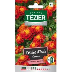 Tezier - Oeillet d'Inde Carmen -- Fleurs annuelles