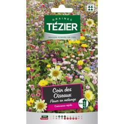 Tezier - Mélange de Fleurs attire les oiseaux -- Fleurs annuelle