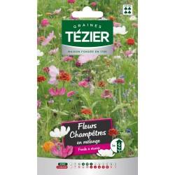Tezier - Mélange de Fleurs champêtre -- Fleurs annuelles
