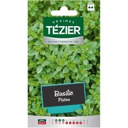 Tezier - Basilic Pistou